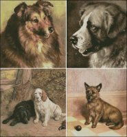 Frank Paton Dogs 1