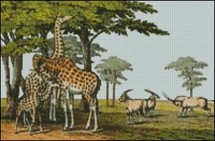Giraffe and Gemsbok