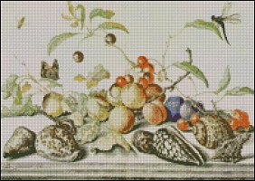 Shells, Fruit and Insects